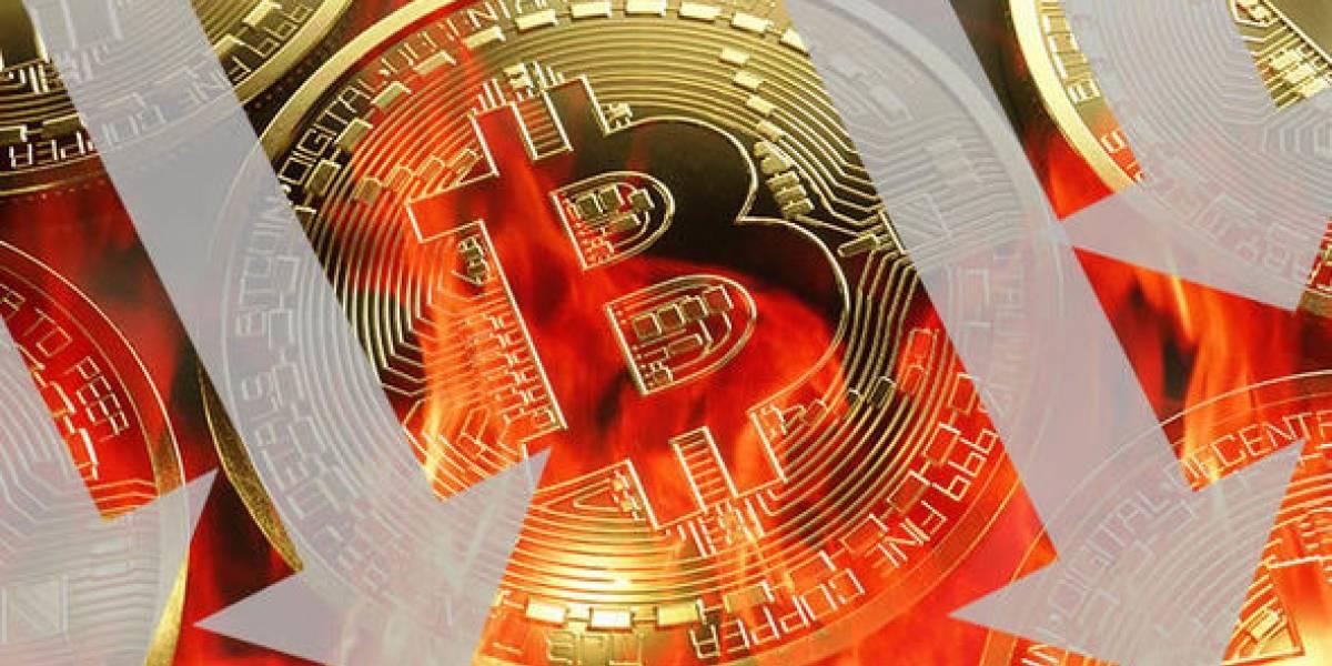 ¡Fraude! El precio del bitcoin habría sido manipulado grotescamente
