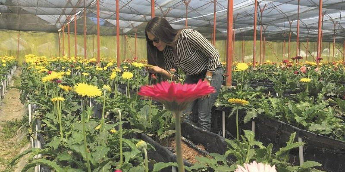 Jardín Constanza realiza Tours de las flores