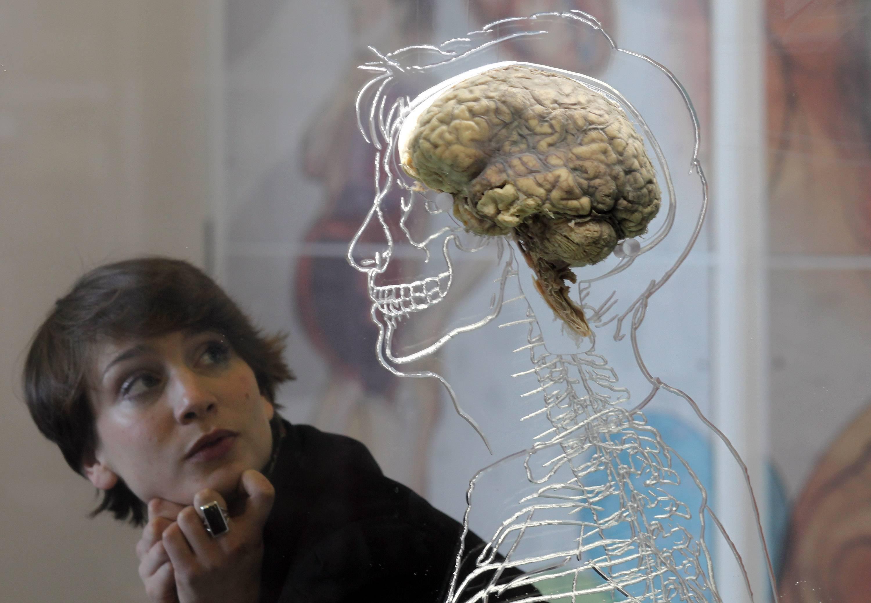 Estudio afirma que las personas que utilizan Stickers tienen bajo coeficiente mental