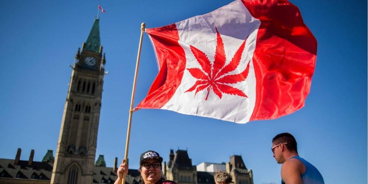 Canadá legaliza uso recreativo da maconha: saiba em que lugares o uso da droga é permitido