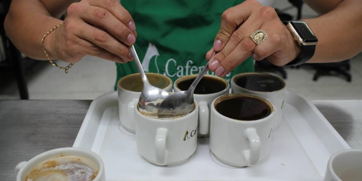 Mujer se rompió tres costillas en un ataque de tos: la culpa es del café