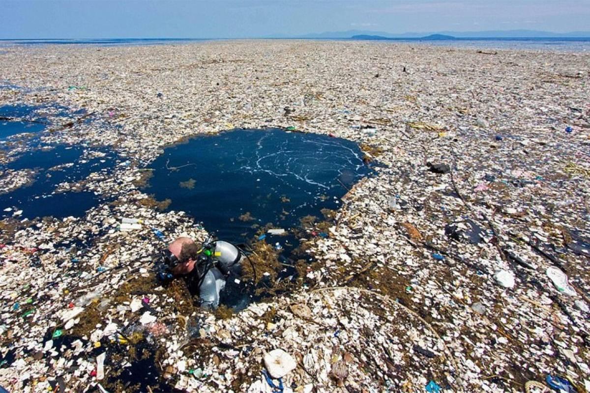 Image result for la isla de basura del pacifico mas grande francia