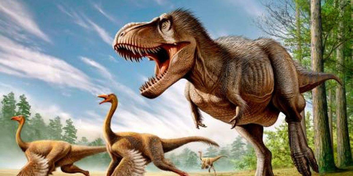 No tenía solamente los bracitos cortos: la inesperada revelación sexual sobre el Tiranosaurio Rex que pone fin a su gran mito