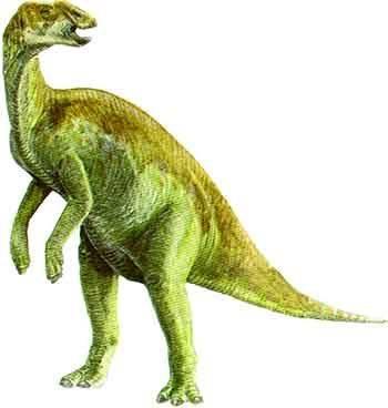 Kritosaurus