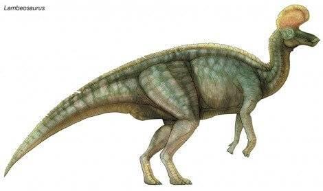 Conoce Algunos De Los Diferentes Dinosaurios Que Habitaban En Mexico La serie se desarrolla en la prehistoria, donde los dinosaurios viven en sociedad algo parecida a la humana, tienen familias y tecnología. diferentes dinosaurios que habitaban