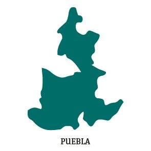 PREP 2018: Silueta Puebla