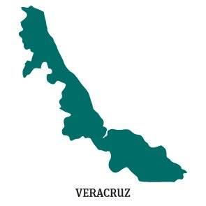 PREP 2018: Silueta Veracruz