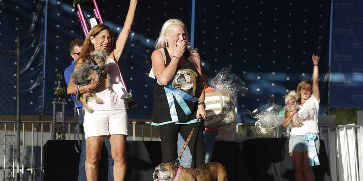 """Bulldog inglés de nueve años ganó el título al """"perro más feo del mundo"""""""