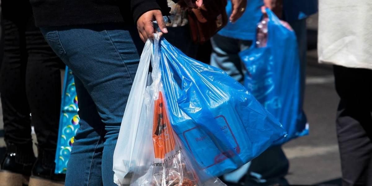 ¿Prohibir o no prohibir? Debate de las bolsas plásticas se abre una vez más