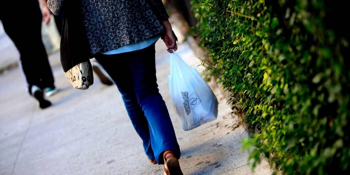 Industria del plástico va al TC para frenar ley que prohíbe las bolsas plásticas