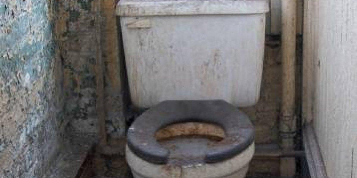 ¿Sentada o no?: la ciencia revela la técnica para que las mujeres no contraigan infecciones cuando usan un baño público