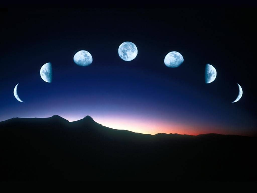 Luna Nueva