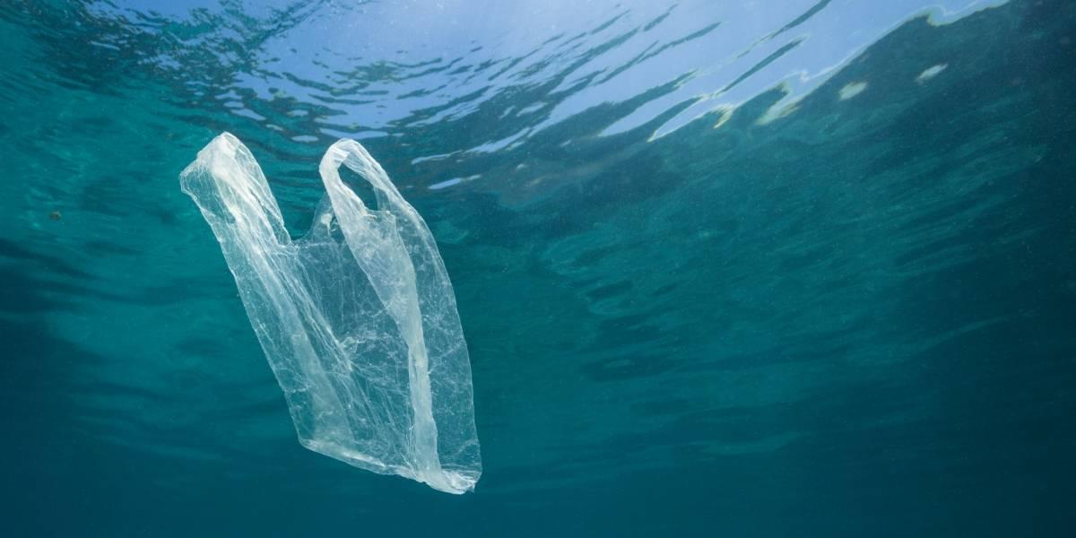 """Organizaciones pro medioambiente criticaron el """"freno"""" a la ley de bolsas que presentó Asipla"""