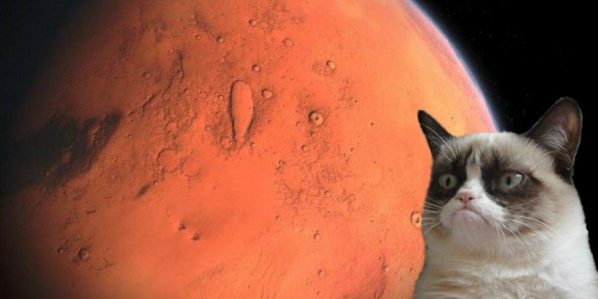 3 signos que mais sofrerão com os efeitos de Marte retrógrado