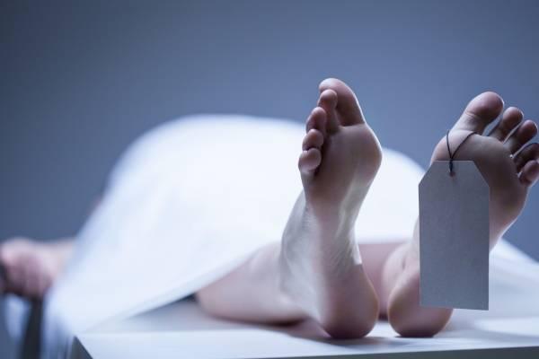 Morgue, cámara mortuoria
