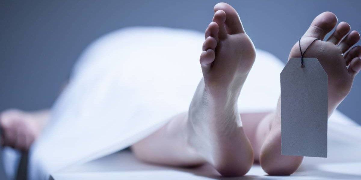 """""""Reducción natural orgánica"""": Washington promulga ley para que los restos humanos se conviertan en composta"""