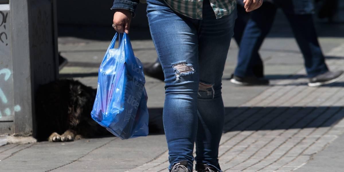 Prohibición de bolsas plásticas gana en el TC: estos son los próximos pasos para que entre en funcionamiento