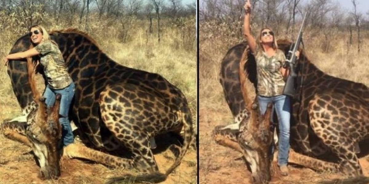 """""""Las oraciones por el trofeo de mis sueños se hicieron realidad"""": cazadora se defiende tras matar extraña jirafa negra y recibir dura condena en las redes sociales"""
