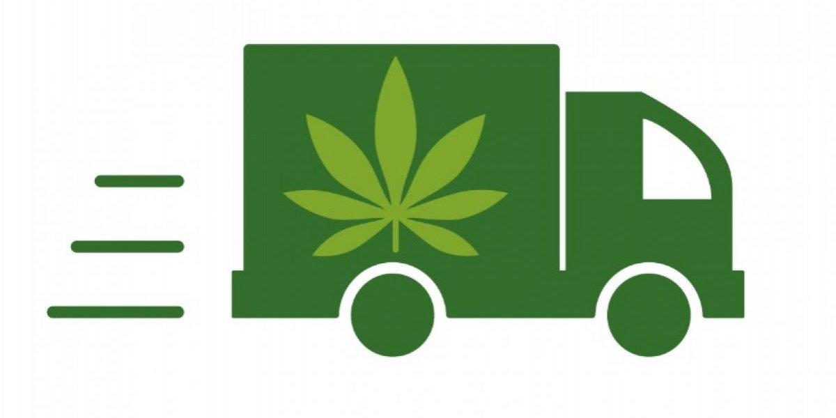 Nuevo Reglamento establece 'delivery' de cannabis medicinal