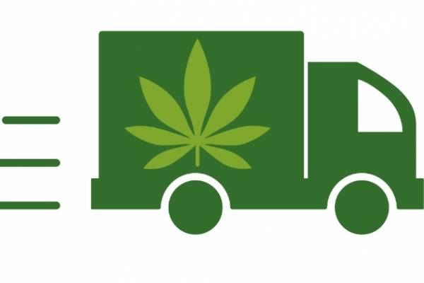 delivery cannabis