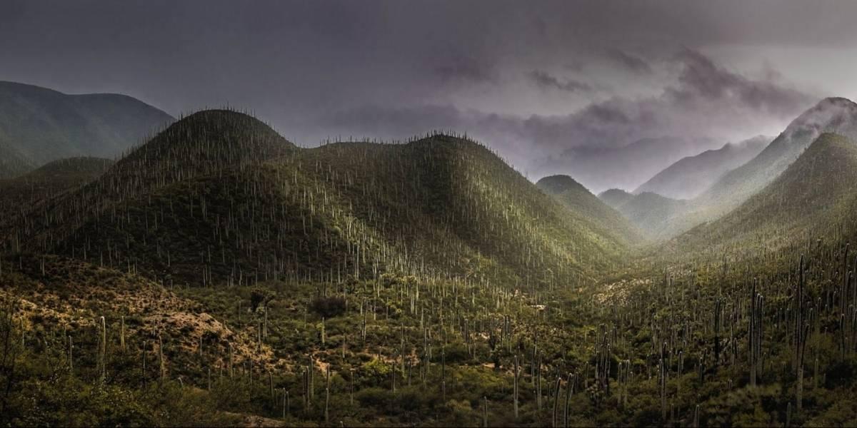 La UNESCO nombra un nuevo Patrimonio de la Humanidad en México