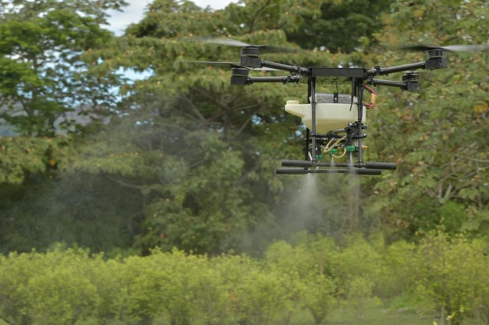 Gobierno colombiano fumigará cultivos de coca usando drones