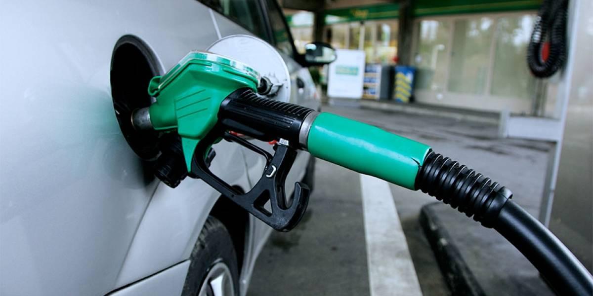 MEM aún no decide si sancionará a distribuidoras por acuerdo de precios en combustibles