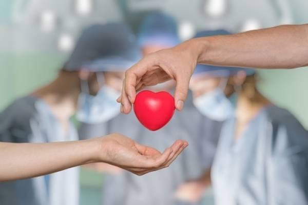 Donantes de órganos
