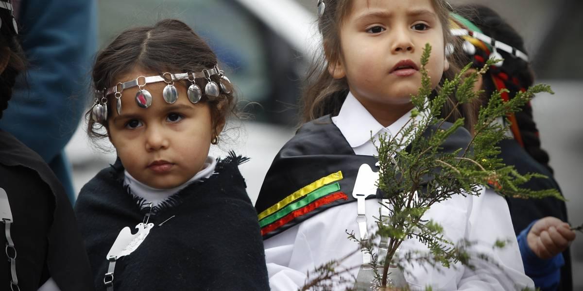 """Nueva asignatura para los colegios el 2020: Mineduc inicia consulta indígena para """"Lengua y Cultura de Pueblos Originarios"""""""