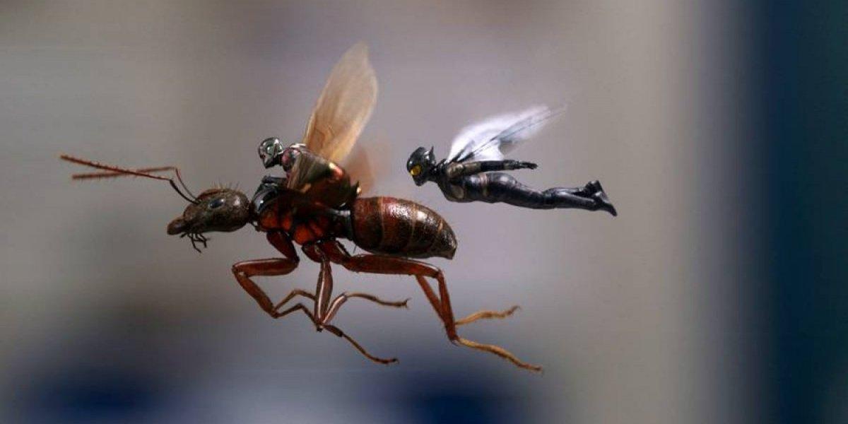 """""""Ant-Man and the Wasp"""" copa taquillas en EE. UU. y Canadá"""