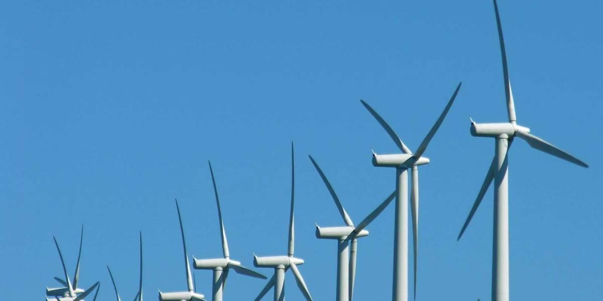 AMEBA: El software chileno que usa la nube y los datos para hacer más eficiente el mercado de la energía eléctrica