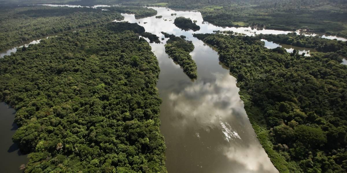 ¡Excelente! Colombia recibirá un presupuesto de 52 millones de dólares destinados a protección ambiental