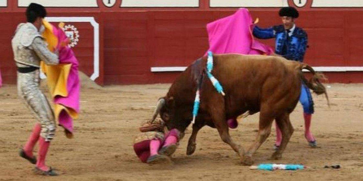 Imagens fortes: Touro arranca parte do couro cabeludo de toureiro na Espanha