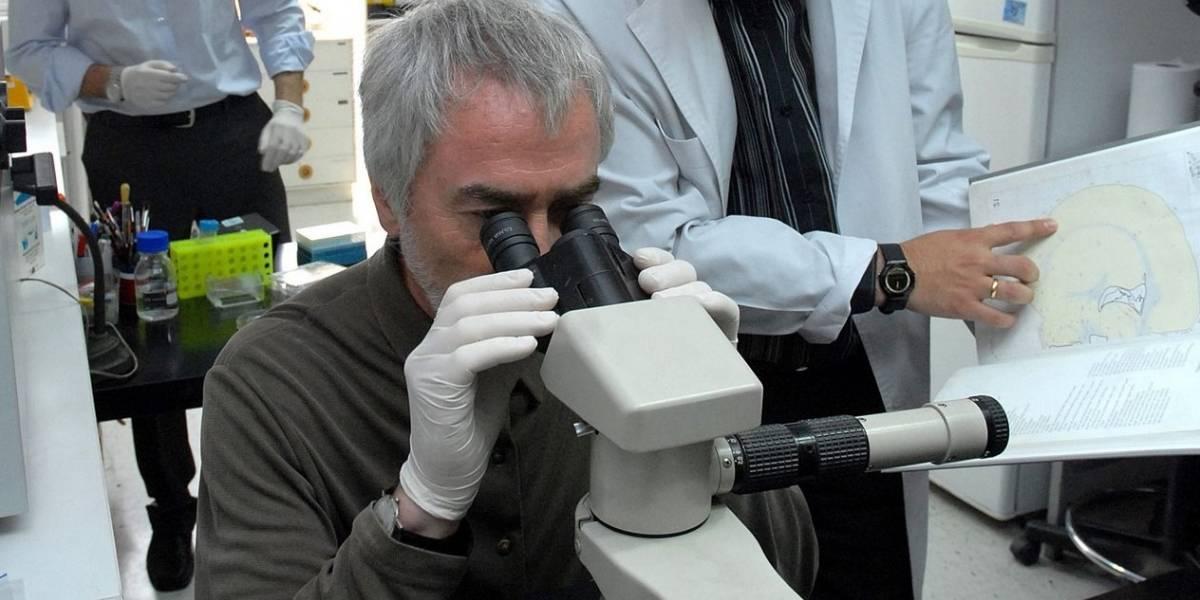 Conicyt se queda sin fondos para apoyar a científicos chilenos y origina fuerte tensión