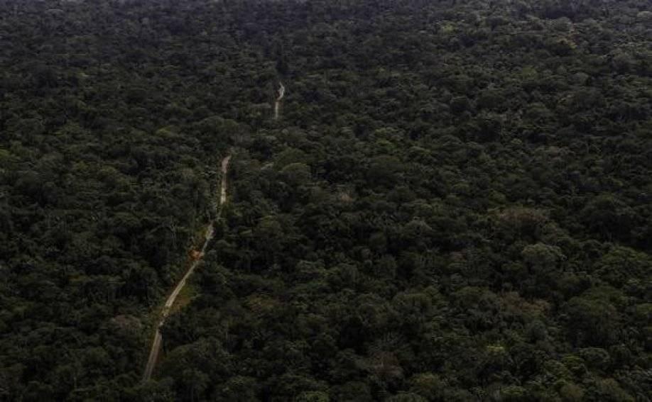 Petroamazonas gestiona licencia para explotar Ishpingo del ITT ANDES