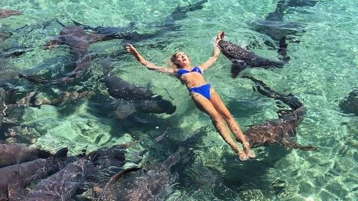 Durante um mergulho nas águas cristalinas da ilha Reprodução/Redes sociais