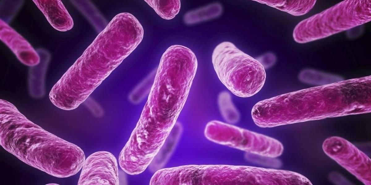 Temida enfermedad de transmisión sexual se está volviendo resistente a los antibióticos