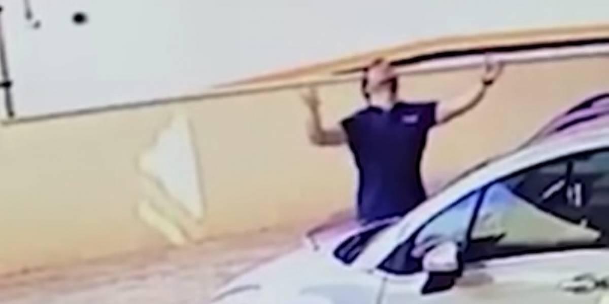 Perro cae del balcón de un noveno piso y la jugada maniobra de este hombre logró salvarle la vida