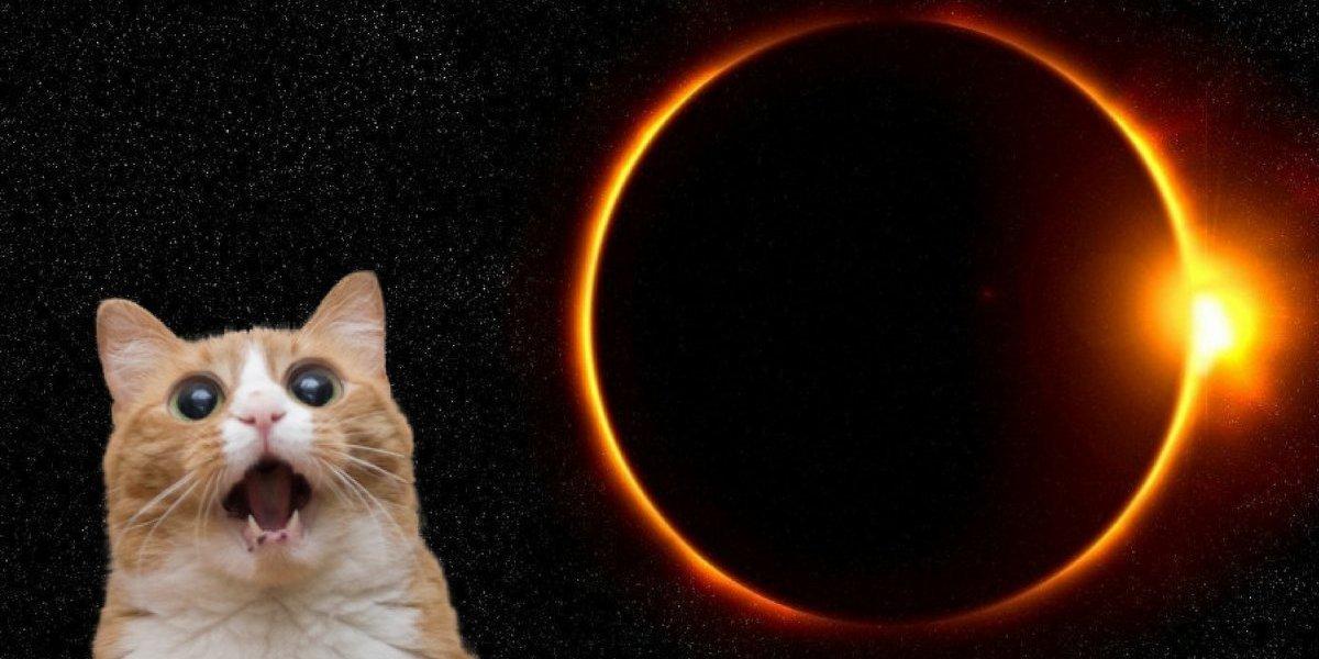 Os signos que serão beneficiados pelo eclipse solar da sexta-feira 13