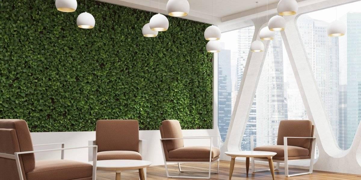 El diseño en las oficinas ayuda al bienestar de los trabajadores