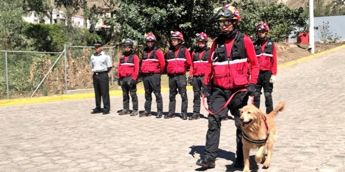 Los Bomberos de Quito despiden a Kratos, su perro símbolo