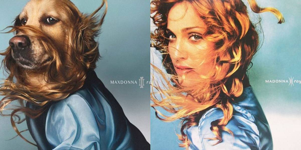 Fotógrafo francês faz releituras das poses clássicas de Madonna com seu cachorro