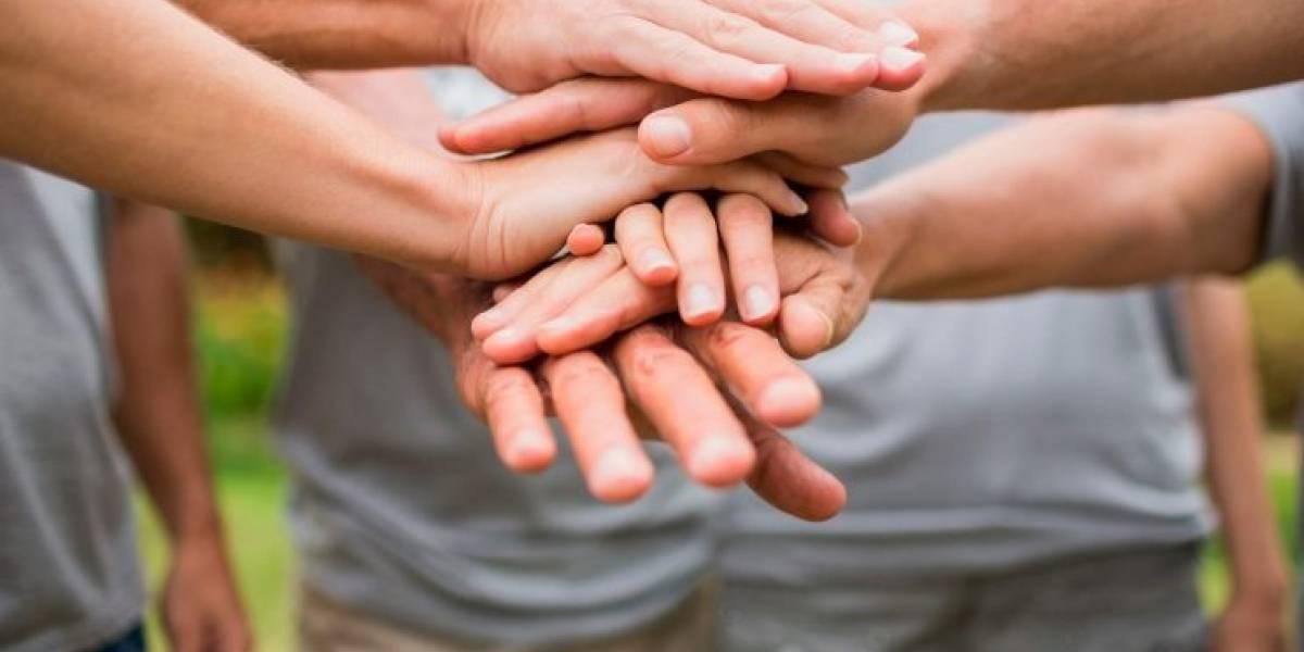 Voluntariado en Chile: ¿Está bien regulada esta práctica?