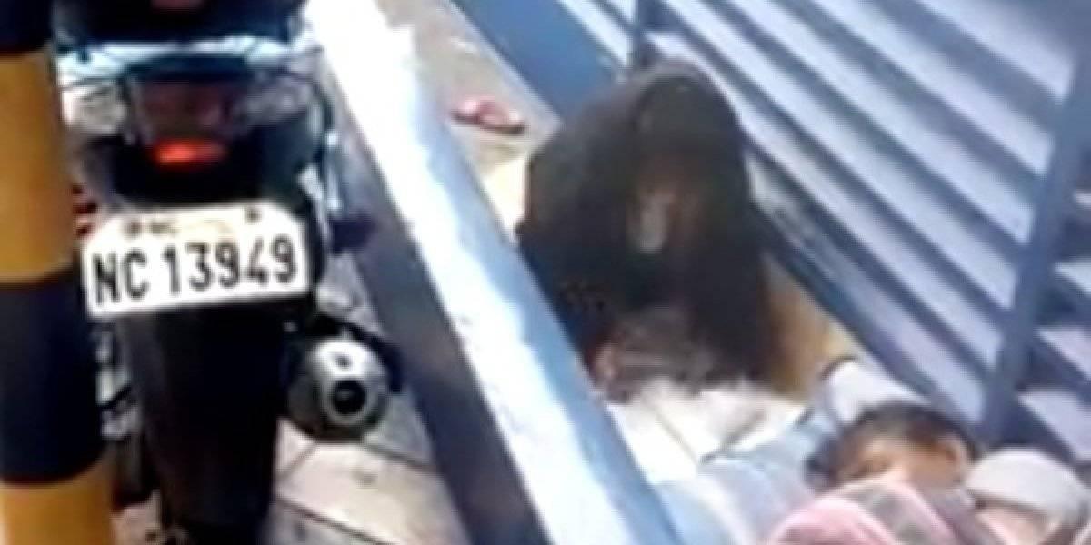 Determinada, esta niña sin hogar hace su tarea bajo la lluvia
