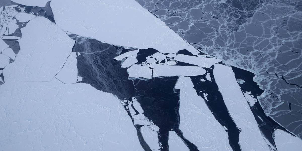 Los efectos del deshielo del Ártico están también golpeando el polo sur