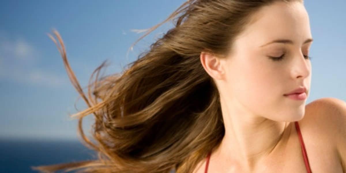 Aceite de argán y linaza: así es el tratamiento que promete reparar al máximo tu pelo