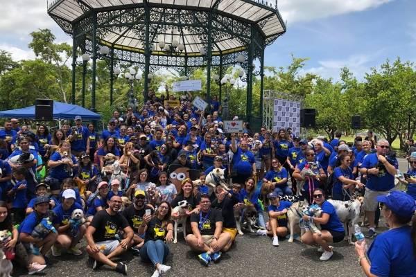 Sobre 900 personas se dieron cita el domingo en el evento llevado a cabo en Mayagüez y Bayamón. / Suministrada