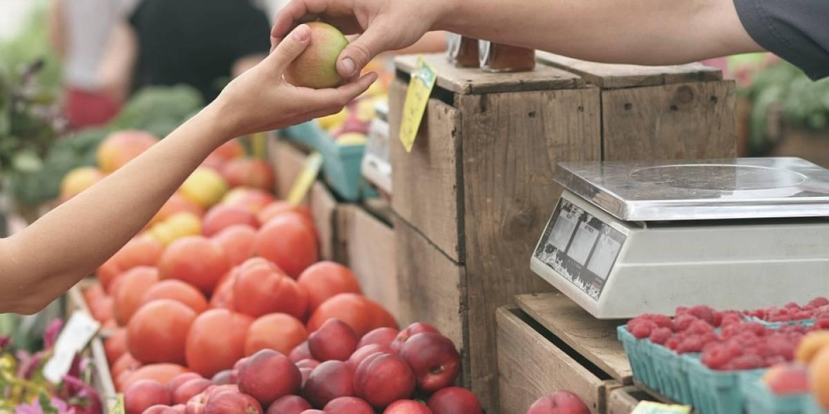 Hortaliças ficam mais baratas no atacado, já as frutas devem pesar na conta