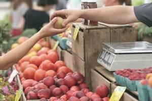 https://www.metrojornal.com.br/foco/2018/07/19/hortalicas-ficam-mais-baratas-no-atacado-ja-frutas-devem-pesar-na-conta.html