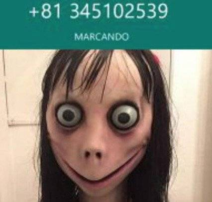 momo de whatsapp Internet